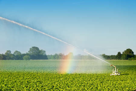 mechanized irrigation of a cultivated  field in italy photo