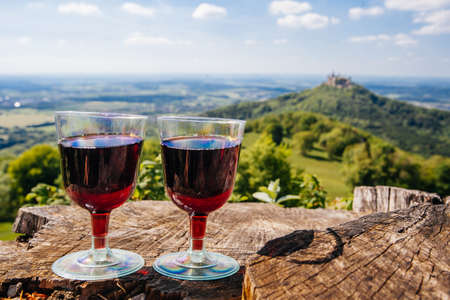 Two glasses of red wine on picnic, nature view Stock Photo