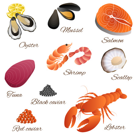 Sea food fish mussel shrimp oyster salmon lobster tuna red black caviar scallop set illustration vector