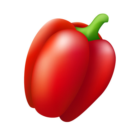 red pepper: Isolated red pepper paprika vegetable illustration vector