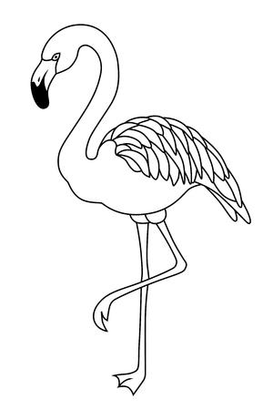 フラミンゴの黒白い鳥分離イラスト