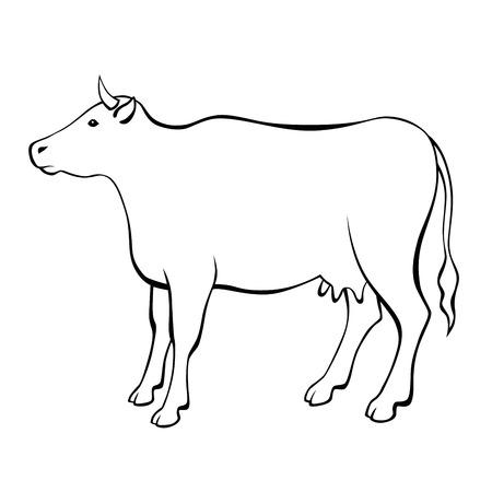 Cow black white isolated illustration Illustration