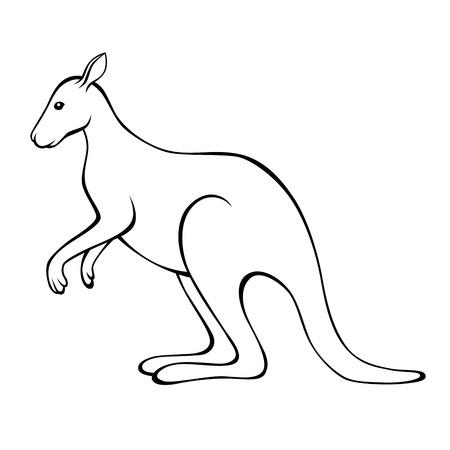 kangaroo white: Kangaroo black white isolated illustration vector