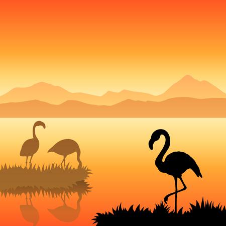 alfa: Flamingo silhouette landscape nature sunset sunrise illustration vector Illustration