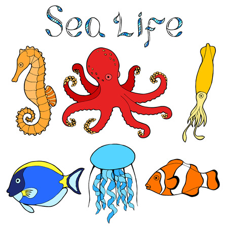 alfa: Sea life fish graphic art color isolated illustration vector Illustration