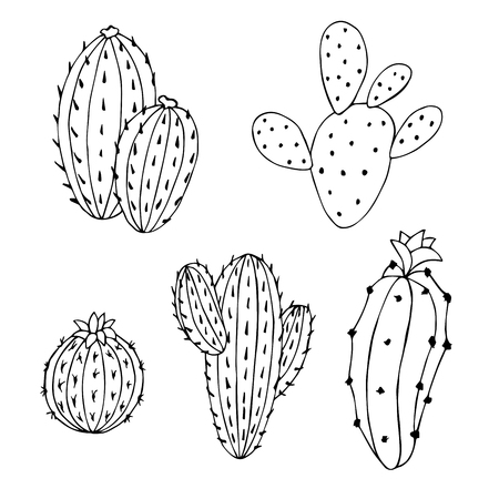 alfa: Cactus set graphic art black white isolated illustration vector Illustration