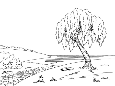 willow tree: Old road willow tree graphic art black white landscape sketch illustration vector Illustration