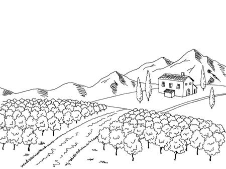art graphique Vineyard noir blanc paysage croquis illustration vecteur Vecteurs