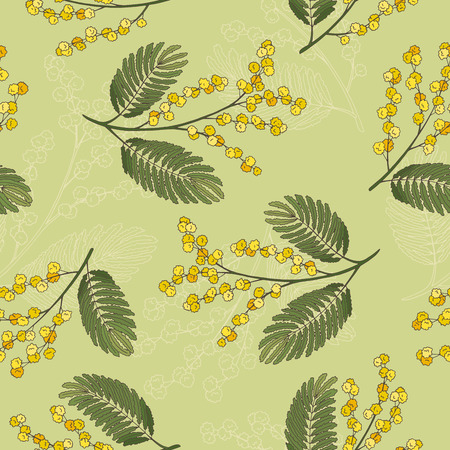 Mimosa graphic green yellow sketch seamless pattern illustration vector