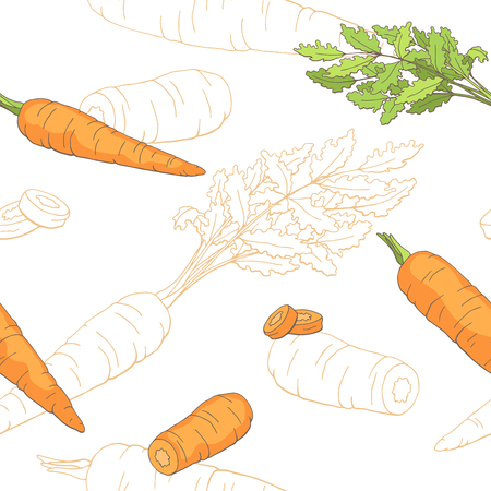 Carrot graphic color sketch seamless pattern illustration vector