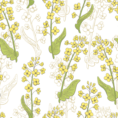 Rape flower graphic color seamless pattern sketch illustration vector Çizim