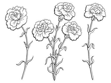 Lily flower graphic black and white isolated sketch illustration carnation flower graphic black white isolated sketch illustration vector mightylinksfo