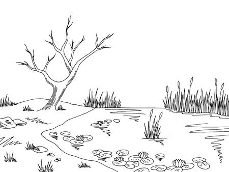 Bog swamp graphic black and white sketch illustration vector Illustration