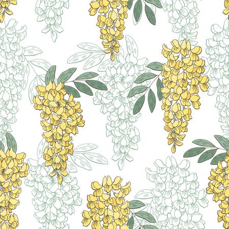 아카시아 꽃 컬러 그래픽 원활한 패턴 스케치 일러스트 벡터