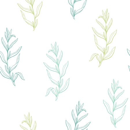 Tarragon herb graphic green sketch seamless pattern illustration vector
