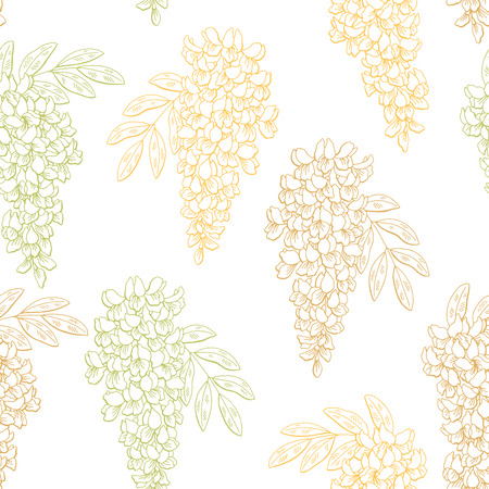 Acacia flower color graphic seamless pattern sketch illustration vector Stock Vector - 93759125