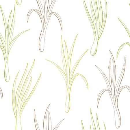 Lemongrass plant graphic color seamless pattern sketch illustration vector Illustration