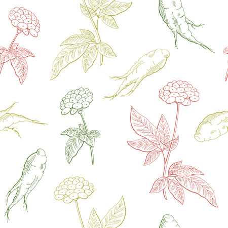 Ginseng graphic color seamless pattern background sketch illustration vector