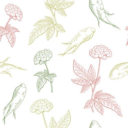 Ginseng graphic color seamless pattern background sketch illustration vector Vetores