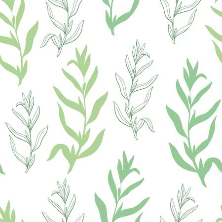 Tarragon herb graphic green sketch seamless pattern background illustration vector