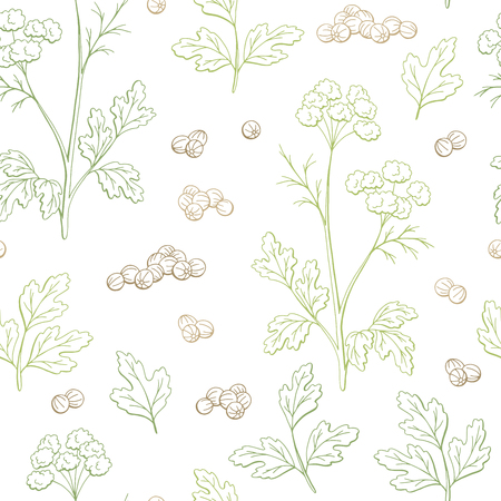 Coriander cilantro plant graphic color seamless pattern background sketch illustration vector