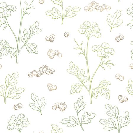 Coriandolo coriandolo pianta grafica colore seamless pattern sfondo schizzo illustrazione vettoriale