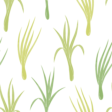 Lemongrass plant graphic color seamless pattern background sketch illustration vector