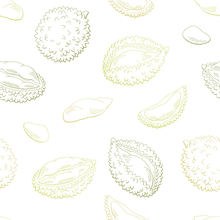 Durian fruit graphic color seamless pattern background sketch illustration vector