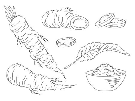 Horseradish graphic set black white isolated illustration vector
