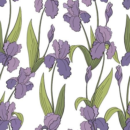Iris flower graphic color seamless pattern background sketch illustration vector