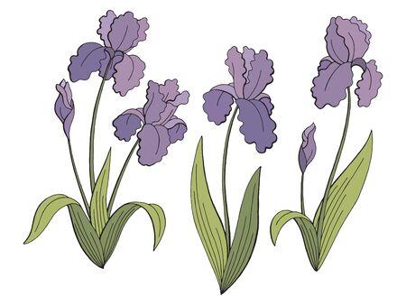 Iris flower graphic color isolated sketch illustration set vector Иллюстрация