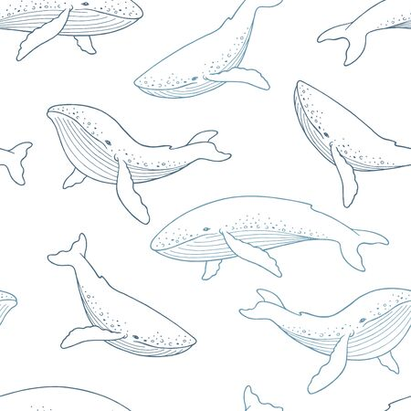 Blue whale graphic color seamless pattern background illustration vector