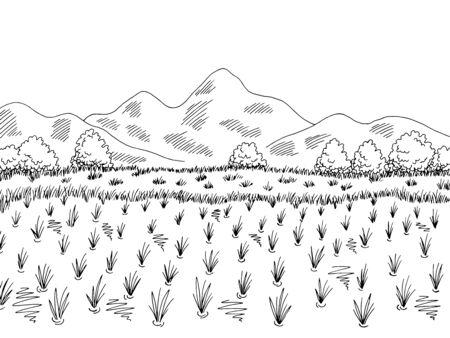 Rice field graphic black white landscape sketch illustration vector