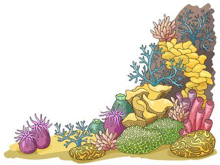Coral sea graphic color underwater landscape illustration vector