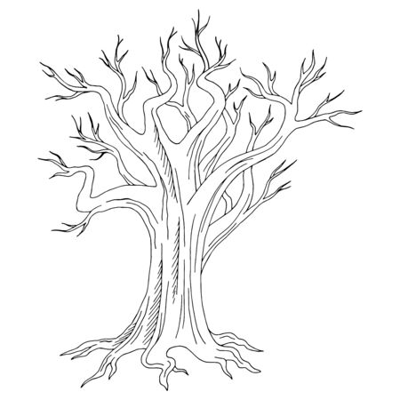 Old tree graphic black white isolated sketch illustration vector Stock Illustratie