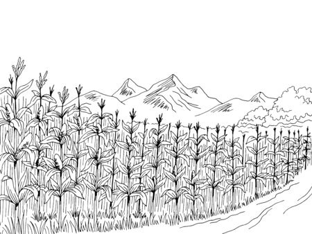 Cornfield graphic black white landscape sketch illustration vector  イラスト・ベクター素材
