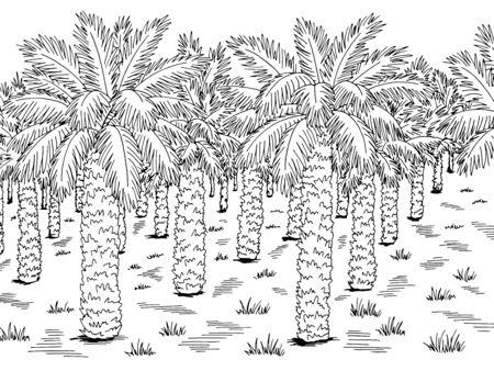 Palm grove plantation graphic black white landscape sketch illustration vector