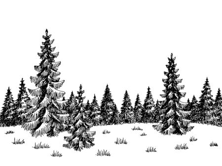 Fir forest graphic black white landscape sketch illustration vector