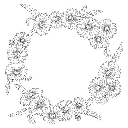 Chamomile flower wreath graphic black white isolated sketch illustration vector