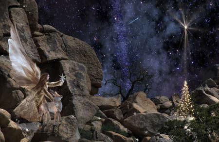Joshua Tree Angel 0370 - An angel, a coyote and a Christmas tree. photo