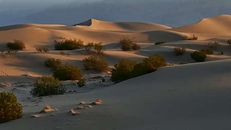 rise above: Sand dunes rise above the Death Valley desert floor in California.