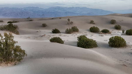 The Panamint Mountains rise behind little white rolling sand dunes.
