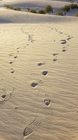 converse: Two sets of Converse footprints in desert sand dunes. Stock Photo