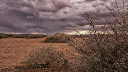 Storm Clouds over a Desert