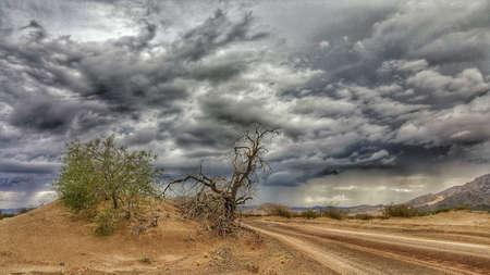 A road through the Mojave Desert in the rain. Stock Photo