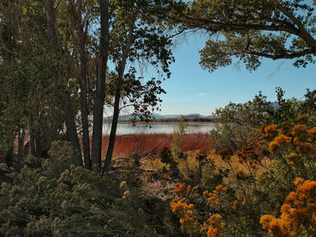 Pahranagat National Wildlife Refuge lake in eastern Nevada in autumn. Banque d'images - 118385704