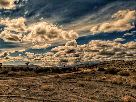 A dirt road in a scrubby California desert landscape. Banque d'images - 118385715