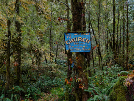A church sign, a place to pray in a rainy western Oregon forest.