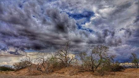 Stormy Desert Skies Stok Fotoğraf