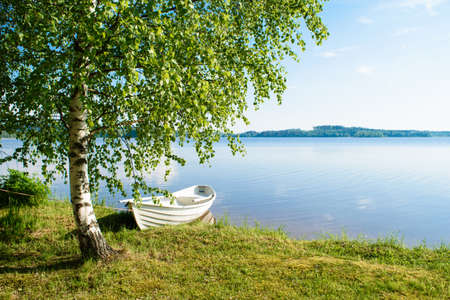 White rowing boat, tied to a birch tree, on the shore of a lake somewhere in the depths of Finland, a good summer day. Vacation on the lake.